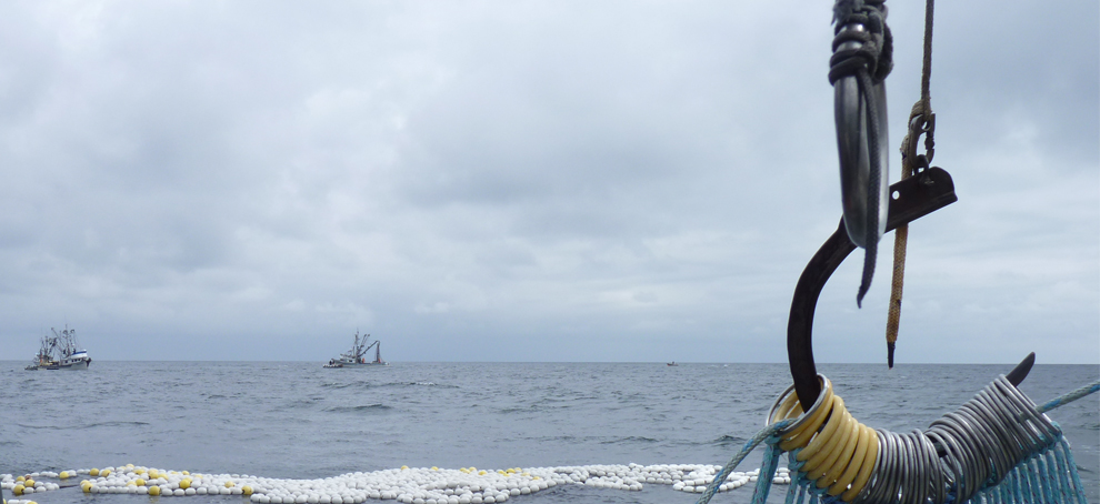 Press Release: United Fisherman of Alaska Proudly Endorses Senator Dan Sullivan For Reelection